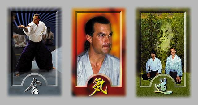 Steven seagal aikido style - Music store north york
